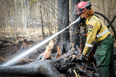 Firefighter dowsing embers on a downed, burnt tree. Courtesy of Goverment of Alberta.