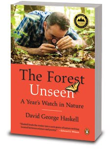 The Forest Unseen Cover Image