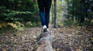 Person walking on a log in a forest. Courtesy of Pixabay.com.