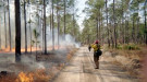 USFS conducting controlled burns