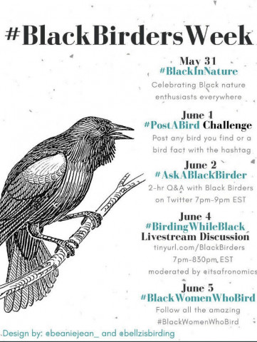 #BlackBirdersWeek Events