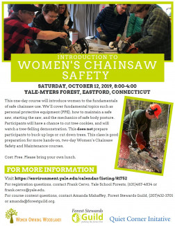 Introduction to Women's Chainsaw Safety