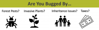 Are you bugged by forest pests? Invasive plants? Inheritance issues? Taxes?