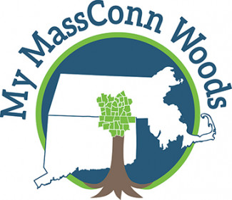 My MassConn Woods logo