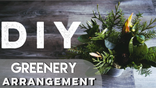 DIY Greenery Arrangement