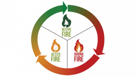 Wildfire prevention circle that illustrates the cyclical efforts of continuing to learn, adapt, and improve in all aspects of living with wildfire.